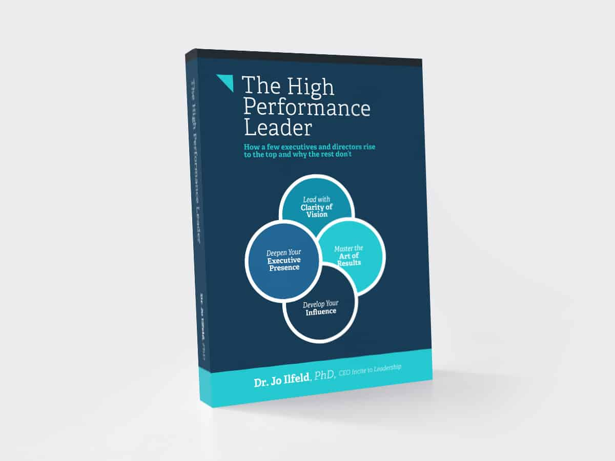 Photo of e-book - The High Performance Leader